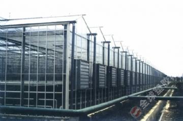 运城 阳光板温室大棚设计 安装 塑料板,塑料板