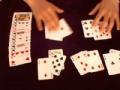 最先进扑克感应分析仪