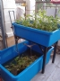 round plastic fish farm tank