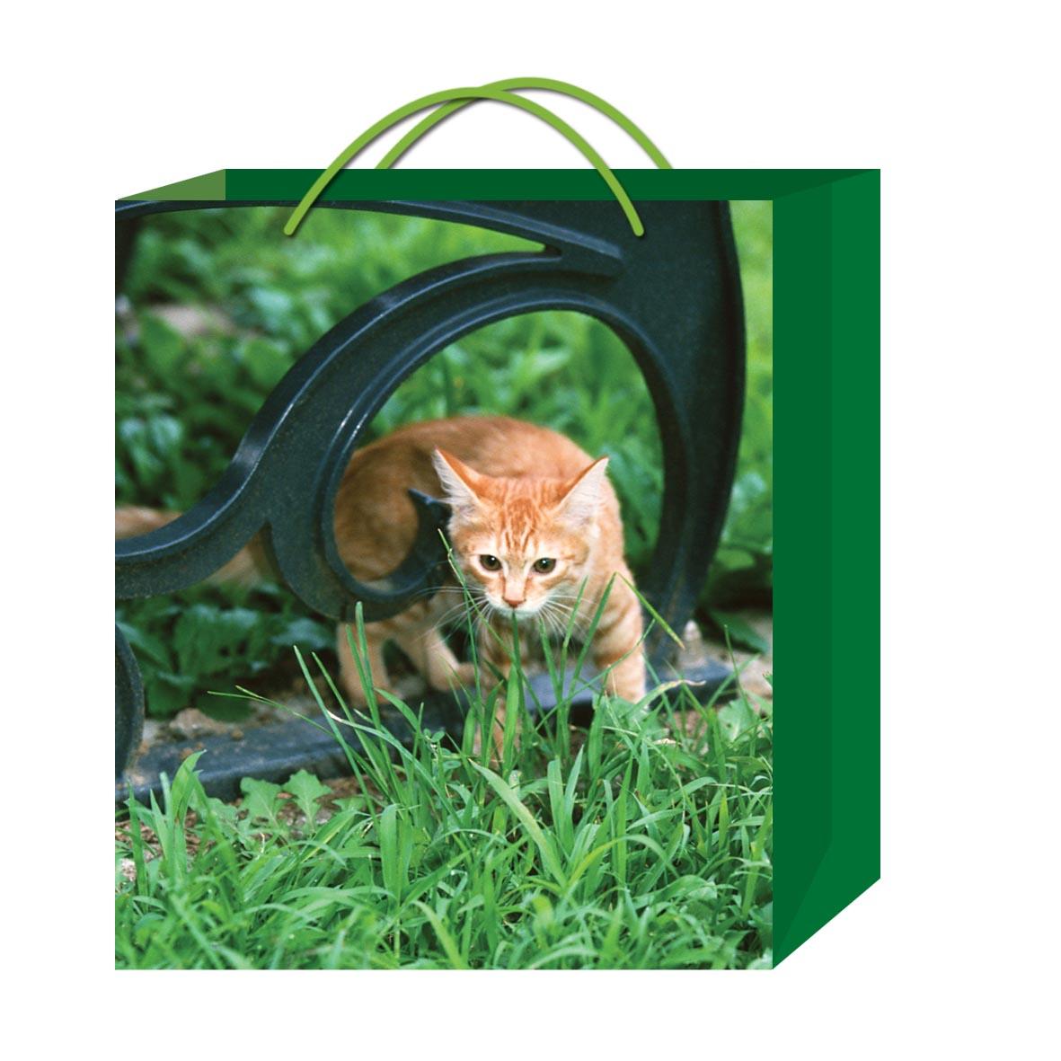 动物系列包装袋 - [塑料袋,塑料袋] - 全球塑胶网