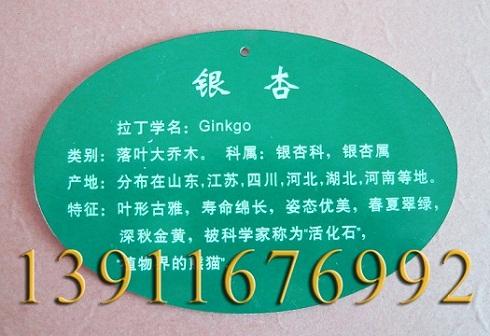 提供北京亚克力树牌专业制作 实木树牌专业制作加工