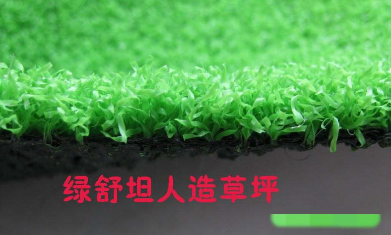 米起批 pe直加曲景观人造草坪 柔软仿真人造草坪 人造草皮2