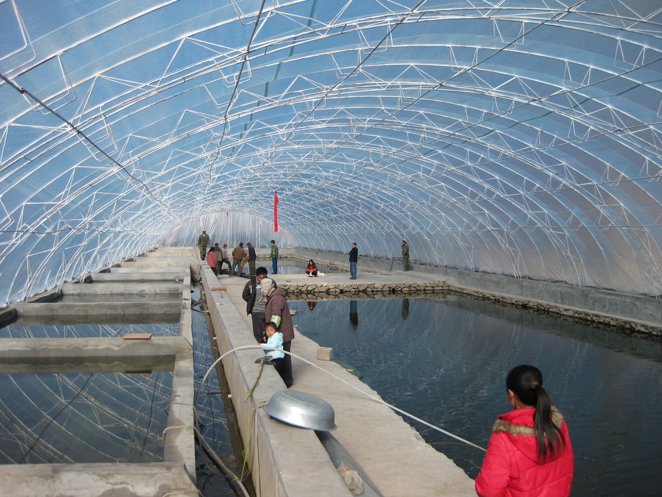 温室大棚设计图纸养鱼