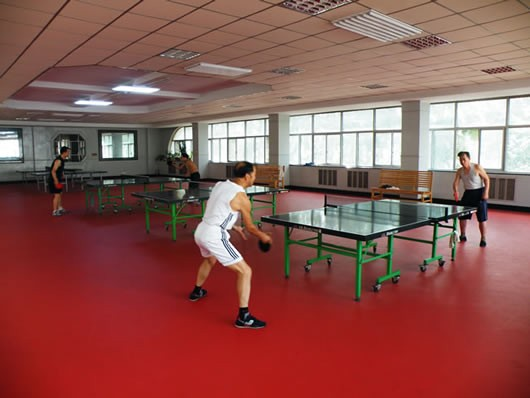 路北乒乓球室内运动防滑耐磨pvc地板地胶图片