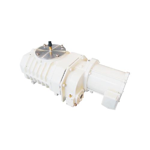 RVT0600罗茨真空泵