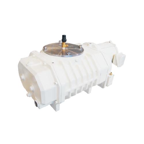 RV0500C罗茨真空泵