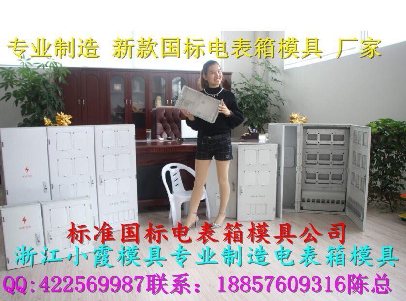 黄岩卖国网新标准单相2位电表箱塑料模具公司