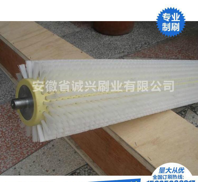 直销定型机毛刷轮 纺织用刷辊 塑料毛刷 毛刷 毛刷轮