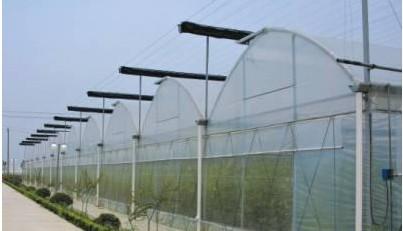 阳光板生态园_生态园阳光板