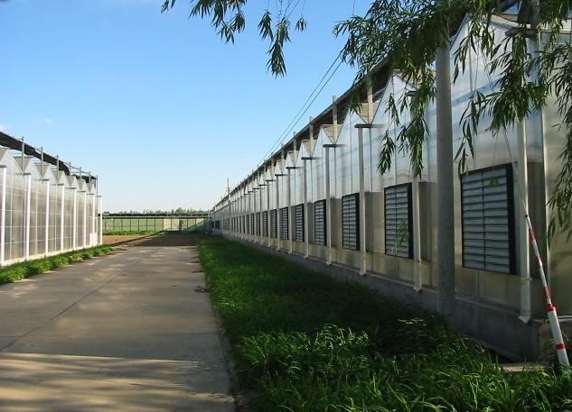 阳光板生态酒店_阳光板生态园
