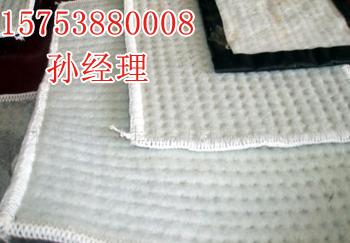 甘肃平渡膨润土防水毯精品出品牌