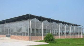 阳光板生态餐厅阳光板生态园