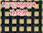 江西鹰潭丝编绦纶土工格栅【售后无忧,欲购从速15753880008】