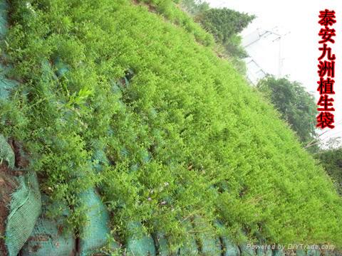 植生袋植草护坡
