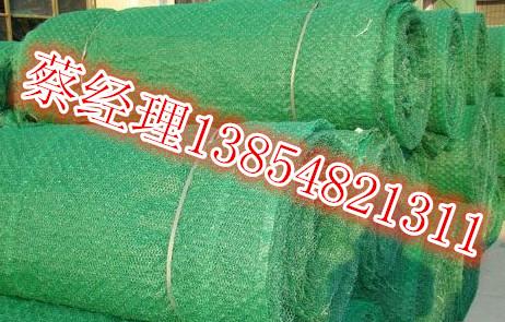 宁德三维植被网 宁德三维植被网价格 宁德三维植被网厂家