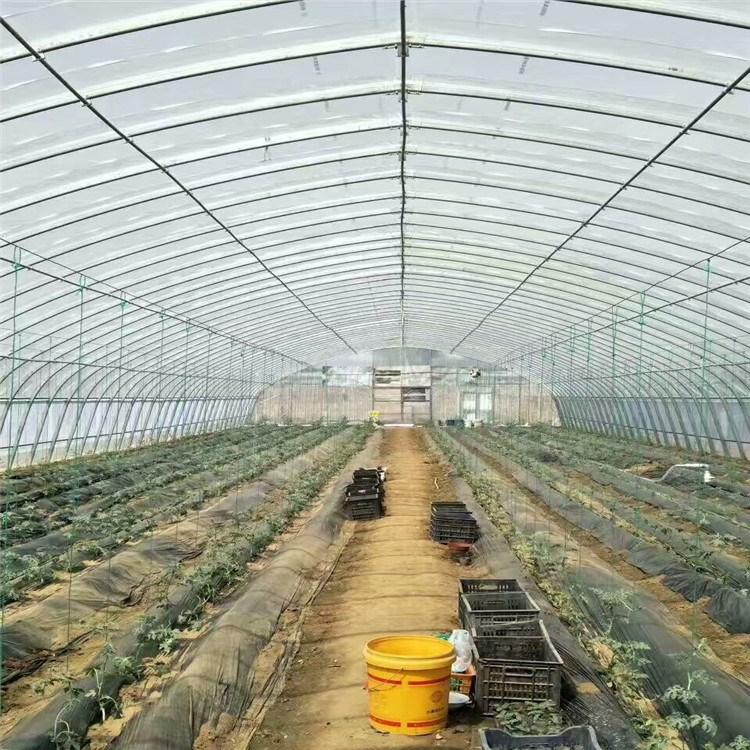 天津昌誉大棚管厂家 批发大棚管 镀锌大棚管 蔬菜专用大棚管 种植大棚管 大棚配件