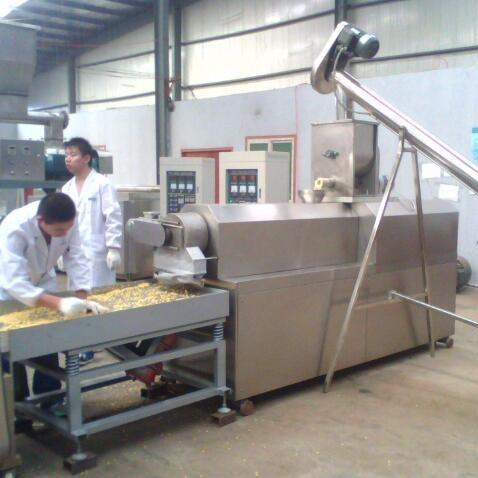 油炸食品 生产线