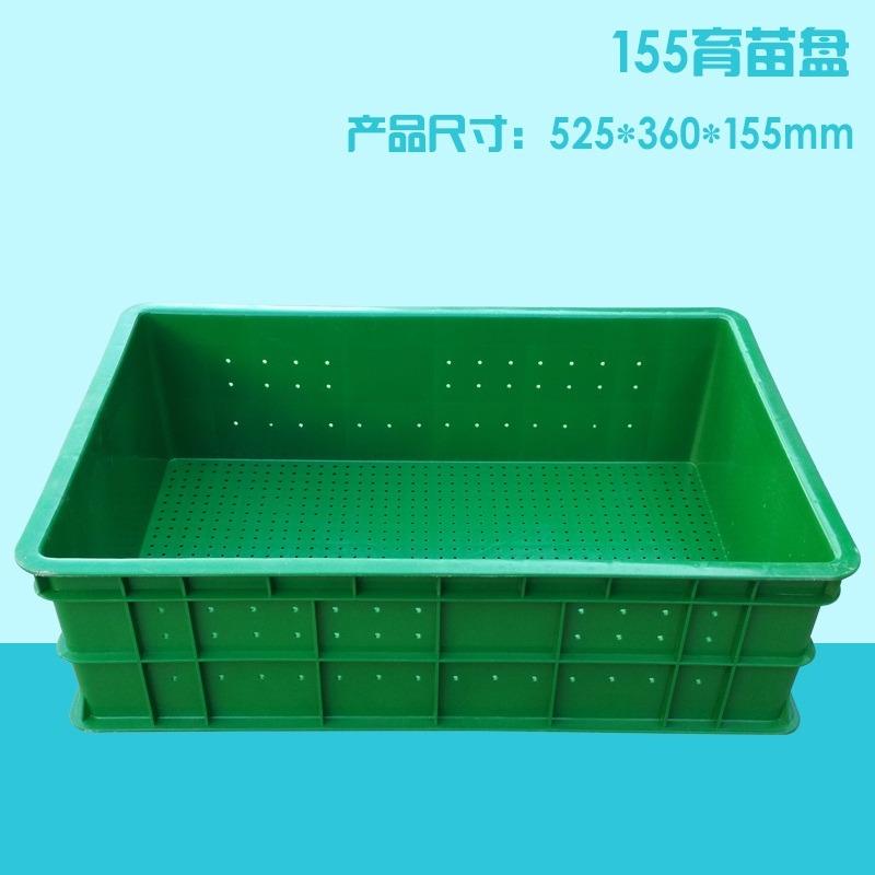 厂家直销  芽苗菜育苗盘  芽苗菜种植盘种植箱