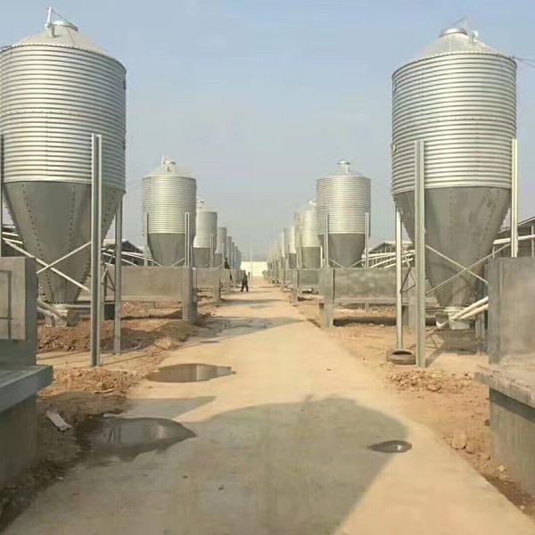 专业生产猪场自动上料线