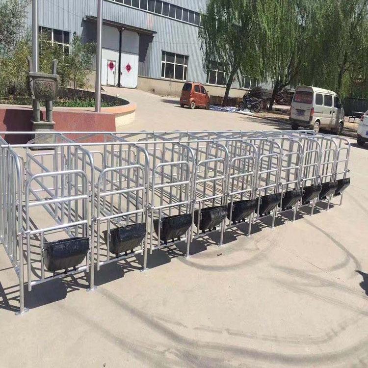 猪用限位栏,哪里生产限位栏,限位栏厂家,猪用定位栏厂家