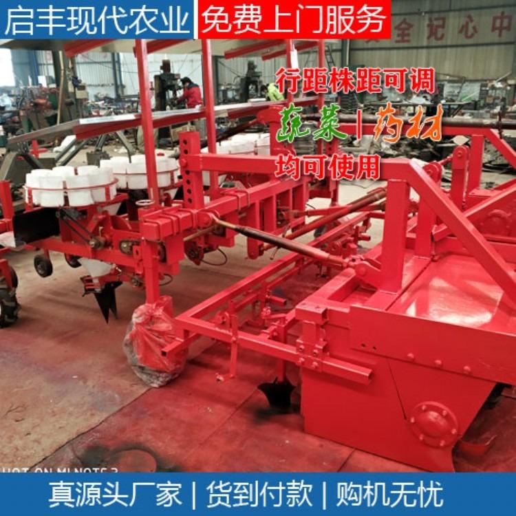 密集种植洋葱移栽机 拖拉机牵引式4行6行洋葱苗种植机 洋葱种苗机