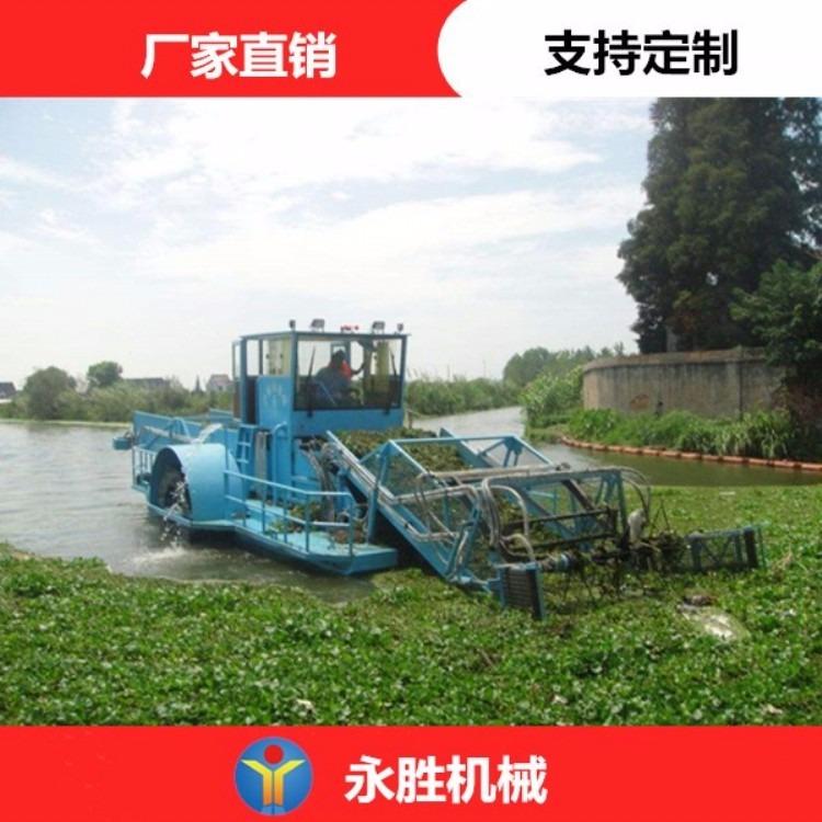 水葫芦打捞船  半自动水葫芦收割船 自动化水草收割船