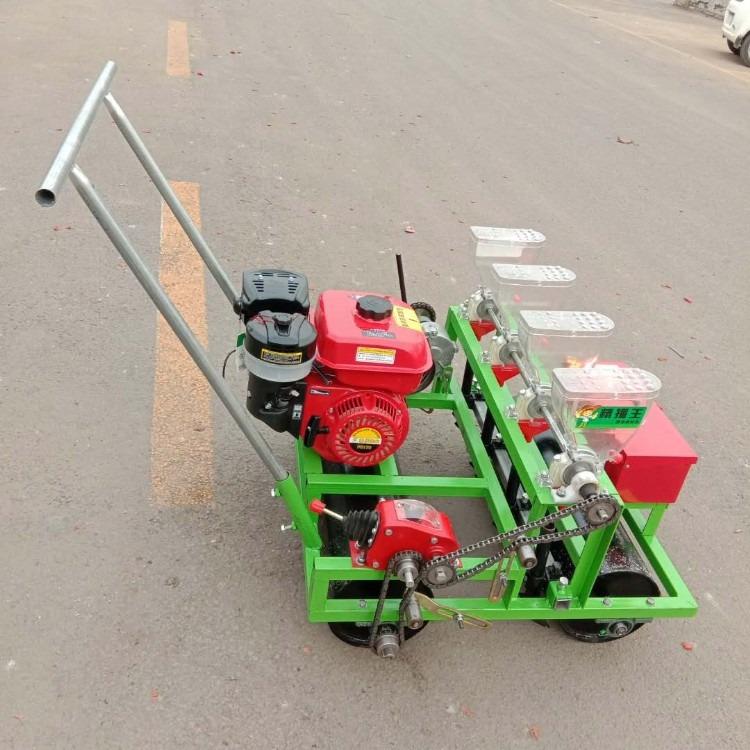 北京蔬菜精播机厂家直销 韩式手推精播机 汽油精播机 新款电动精播机 精播厂家直销