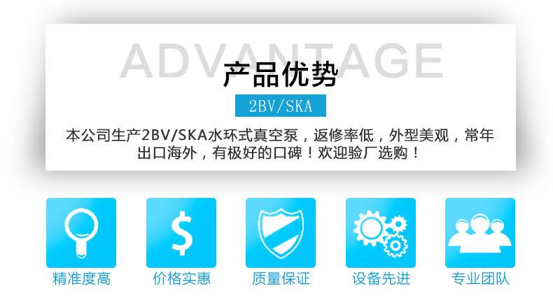 2BV真空泵产品优势