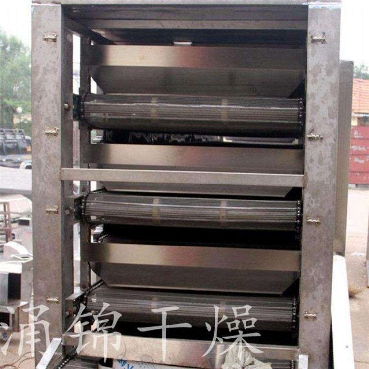 二极管单层带式干燥机