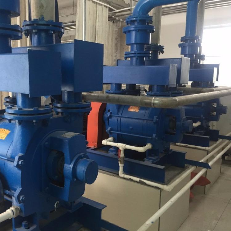 2BE1-202系列水环真空泵