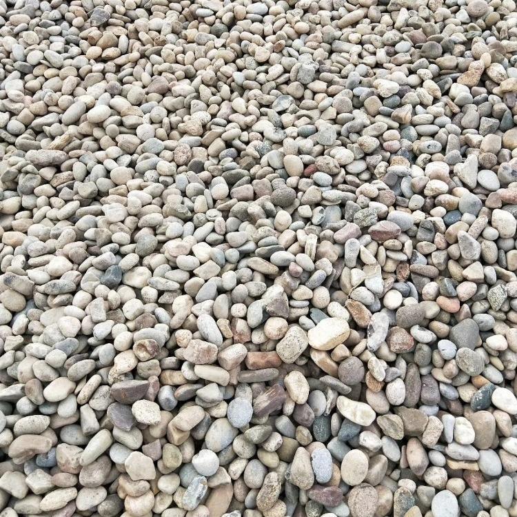 高明鹅卵石高明配电室滤油鹅卵石指定供应商