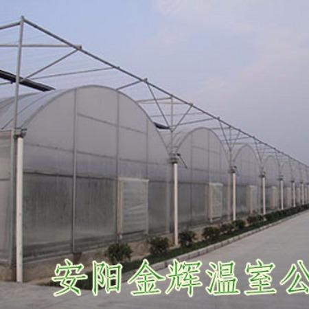 河北连体大棚设计 塑料膜连栋大棚 ,钢架连栋大棚  遮阳网连栋大棚,薄膜温室大棚,来金辉
