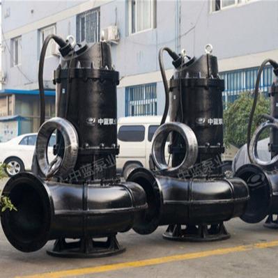 排污泵使用说明 潜水泵推荐品牌-潜污泵结构说明-WQ污水化工污水处理泵-潜水污水泵-污水泵天津厂家