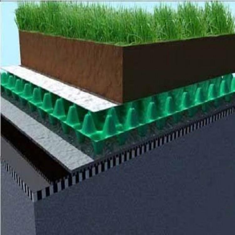 天天特价:自贡排水板厂家 块状蓄排水板_地下室排水板
