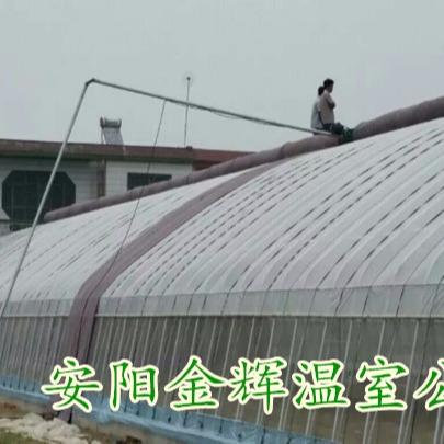 安阳金辉温室工程承包_温室大棚,蔬菜大棚,养殖大棚,几字钢大棚建造