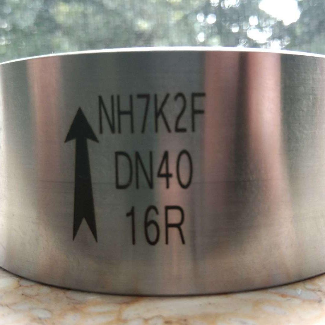 NH7K2F-16P不锈钢真空逆止阀
