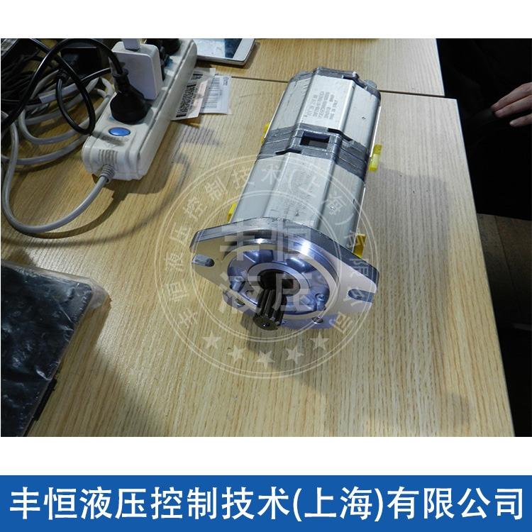 专业供应 RCB系列齿轮泵 大流量齿轮泵 进口齿轮泵
