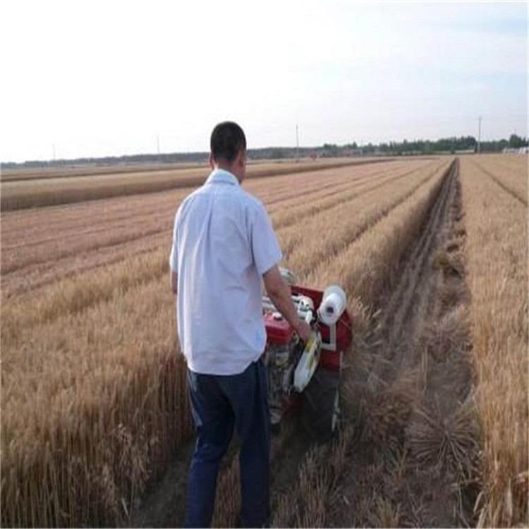 艾草割捆机价格 牧草收割机厂家直销