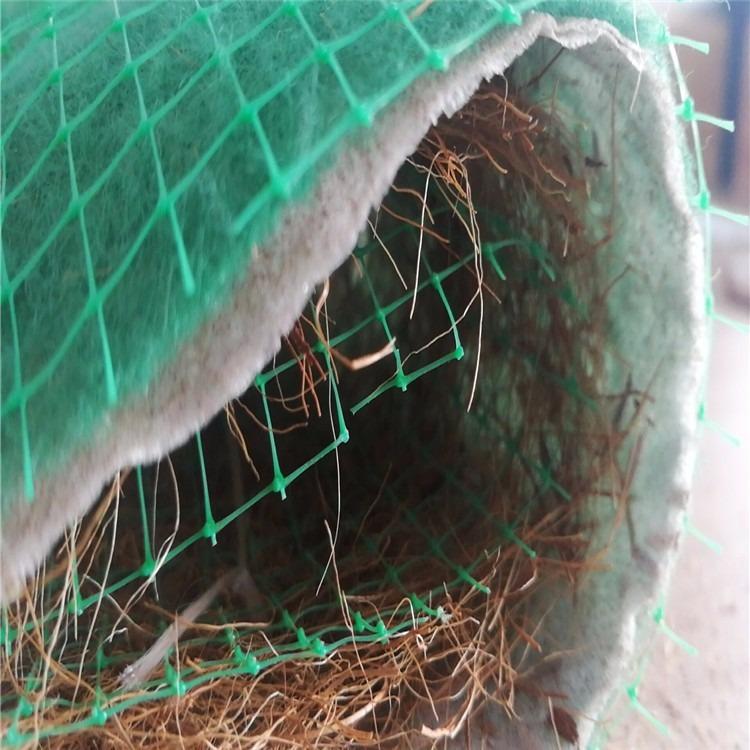 椰丝植生毯 环保生态毯 抗冲植被毯 护坡生态毯 绿维纤维毯 量大供应