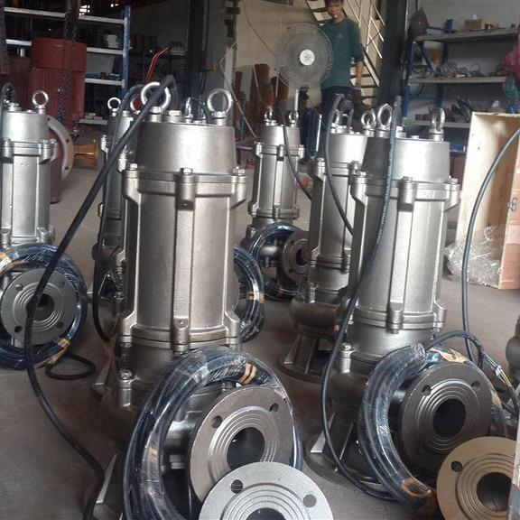 天津奥特泵业生产供应QW系列污水泵