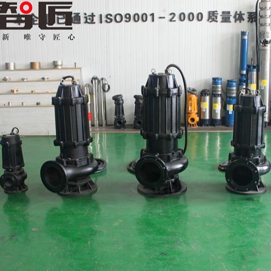 天津智匠泵业QWWQ型潜水泵排污泵,无堵塞污水泵