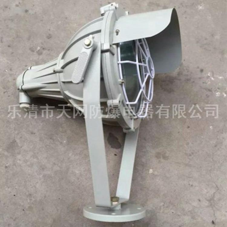 防爆投光照明灯 HRT51-N175  射灯