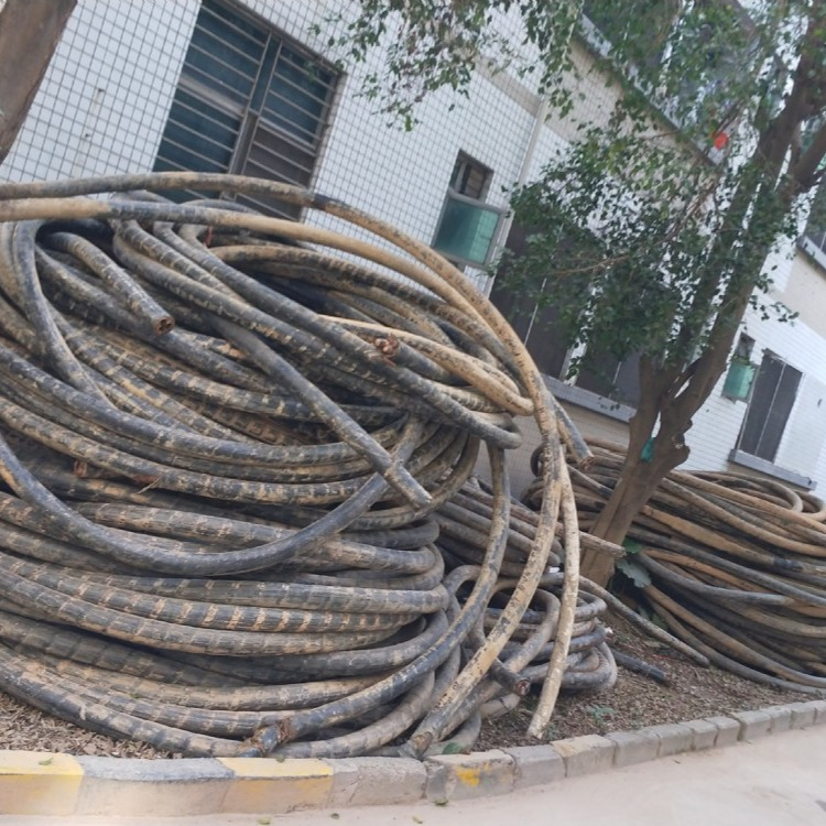 广州旧低压电缆回收  变压配电柜链接电缆回收
