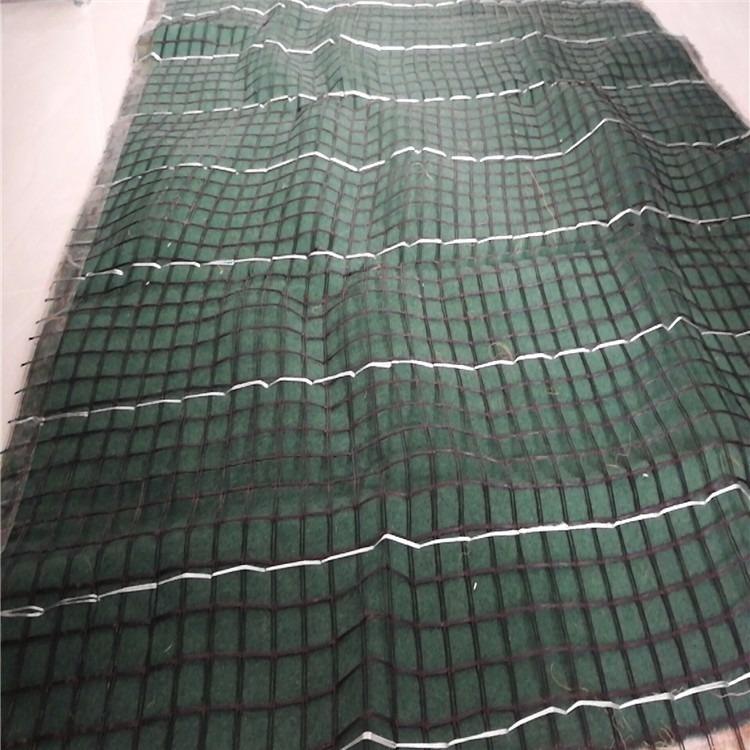 营养土植生袋毯 营养土植生毯价格 营养土植生毯厂家批发供应