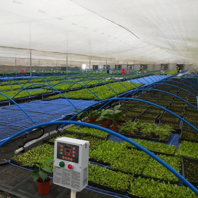 建源温室厂家【专业承接】玻璃温室大棚工程 食用菌大棚 塑料大棚建造