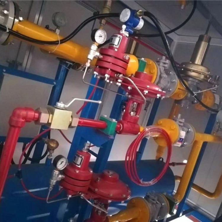 泰燃科技   气体调压撬     cng标准站调压撬
