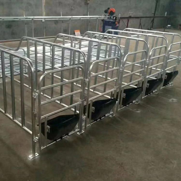广建 猪用定位栏限位栏养殖设备配件