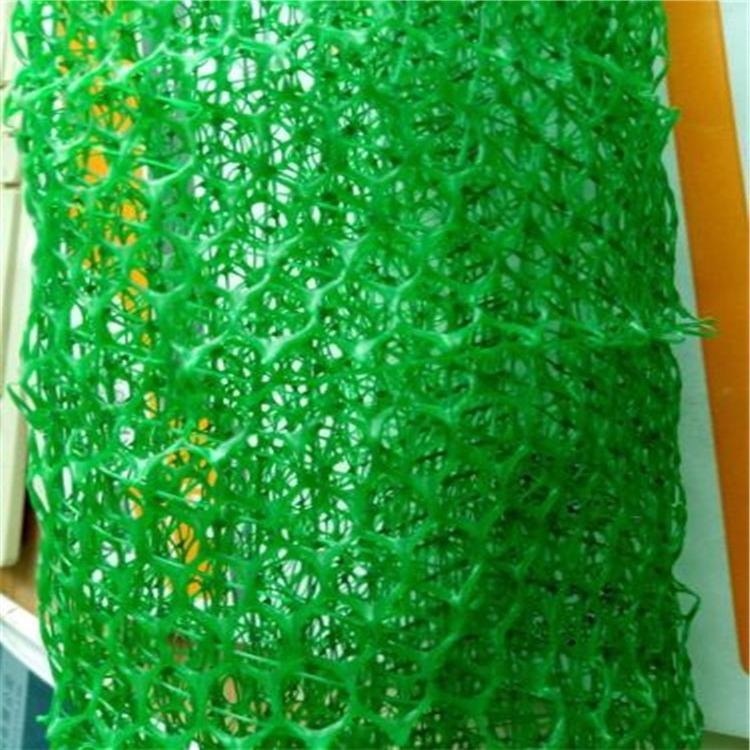 德阳三维植被网厂家直销 绿色环保三维植被网批发 德阳三维植被网耐腐蚀