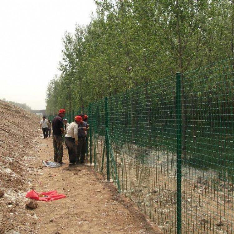 养殖用铁丝网、养殖用铁丝网价格、现货供应养殖铁丝网pvc铁丝网、规格可定做