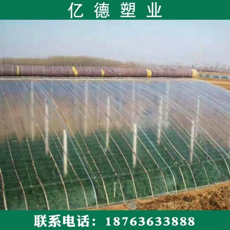 养殖专用黑白膜,黑白膜的价格,塑料农膜厂,农用塑料薄膜,聚乙烯黑白膜